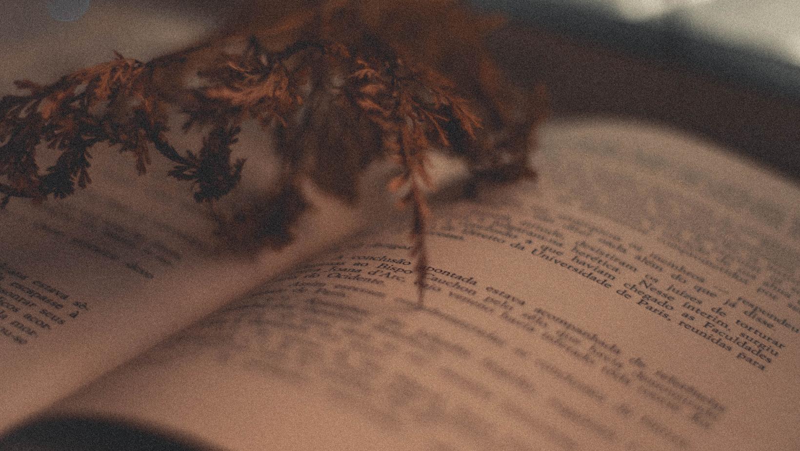 Poétiquement Votre #4 – Marie-Danielle Brix, Jacques Amblard et Jean Rigouste